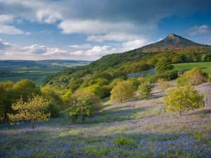 Roseberry Topping, North Yorkshire, England