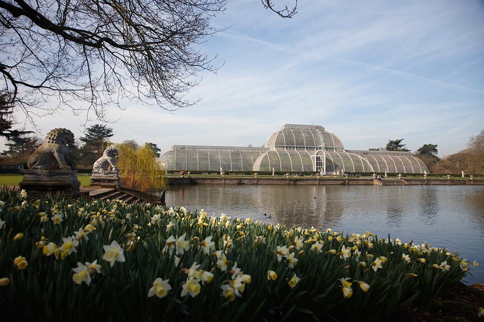 The royal botanic gardens kew usually referred to as kew gardens a